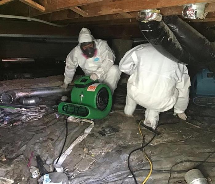 Digging out a crawls space after water damage