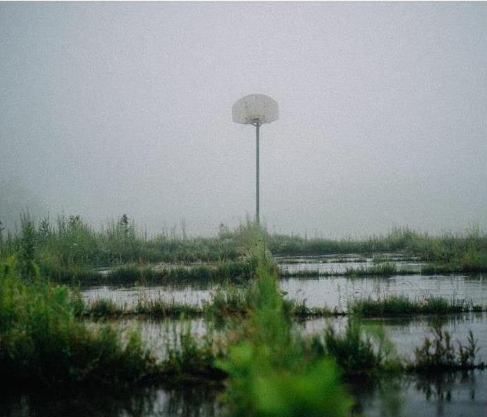 basketball hoop in a field of water