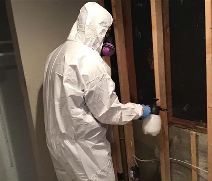 Mold in a Ken Caryl Home - employee spraying a disinfectant in PPE