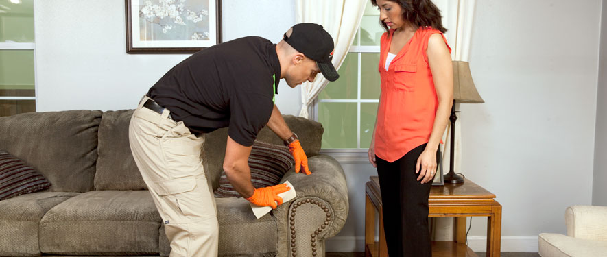 Lakewood, CO carpet upholstery cleaning
