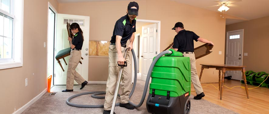 Lakewood, CO cleaning services